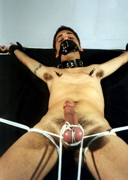 Cock and ball torture (162/166)