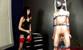Restrained for Cock and Ball Torture
