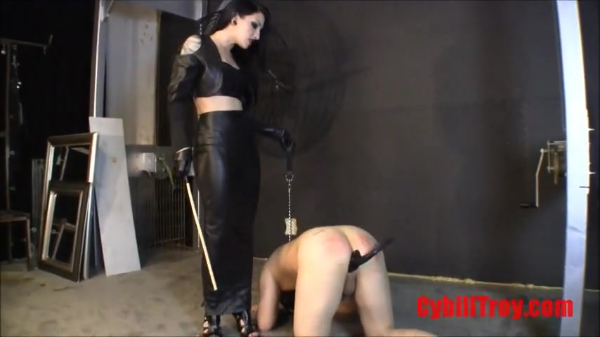 Cybill Troy - Pet Training