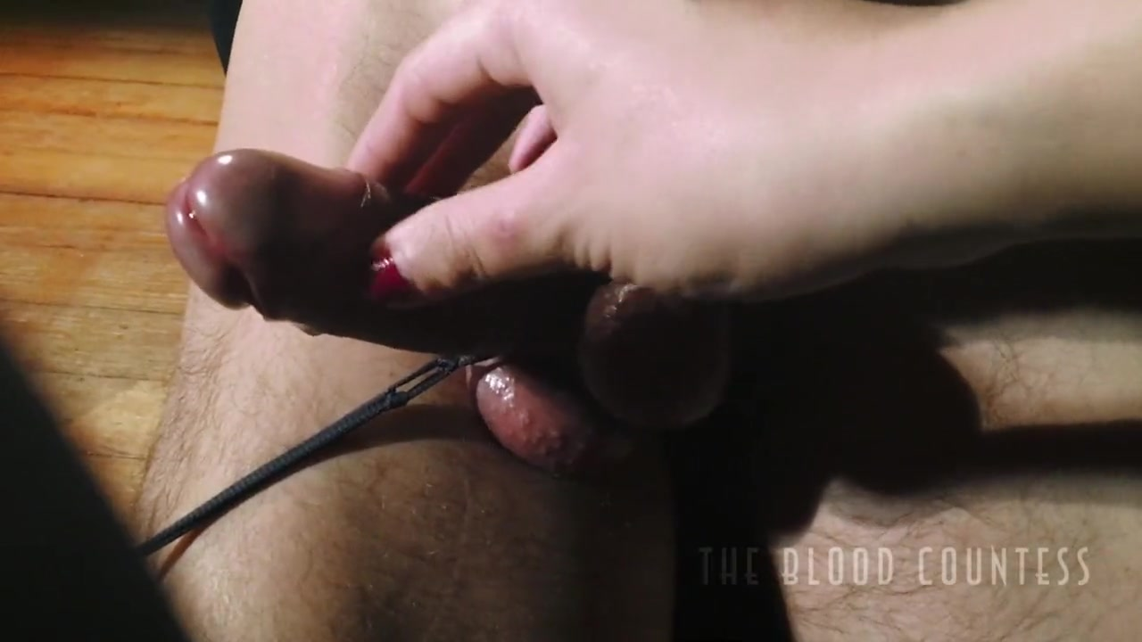 Tied penis and balls teased
